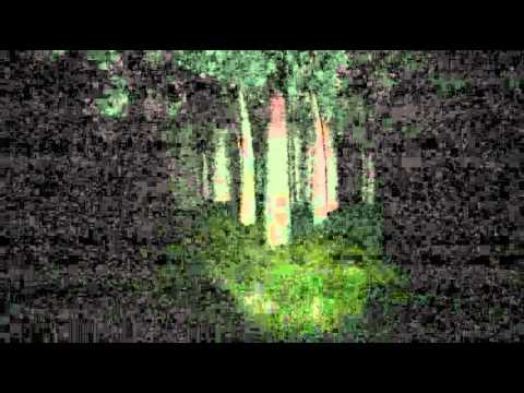 Slender: The Eight Pages – Game Teaser
