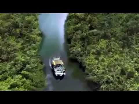The River - Trailer
