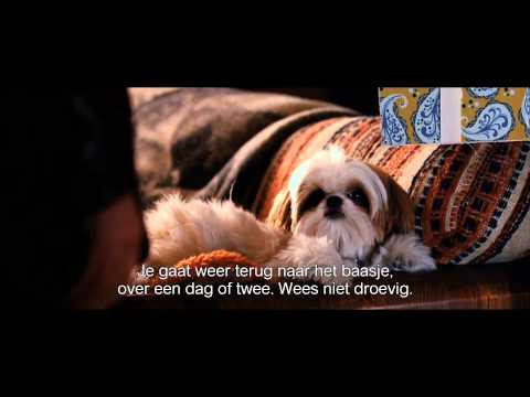 Seven Psychopaths trailer NL
