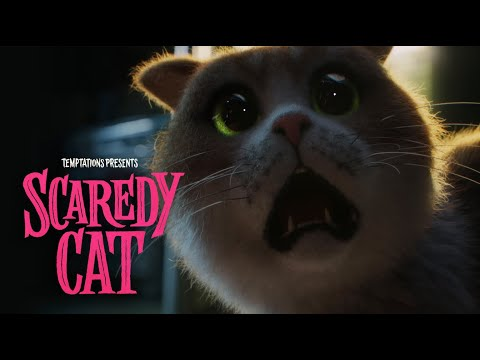 SCAREDY CAT THE MOVIE