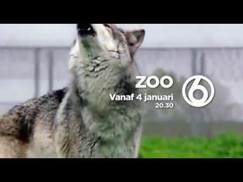 TV-serie ZOO (vanaf 4 januari bij SBS6)