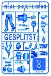 GesplitstBookCover