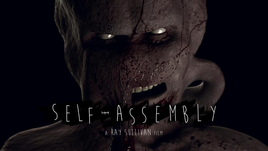 self-assembly-ray-sullivan
