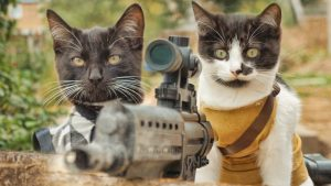 cats-vs-zombies