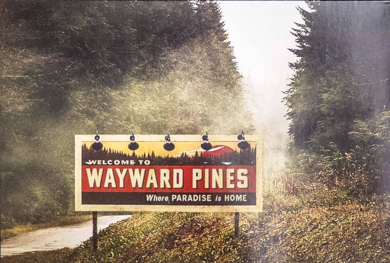 Wayward Pines artwork